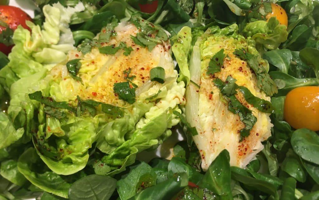 La sucrine, avec la mâche, pour une succulente salade d'automne / Un jardin dans le Marais poitevin.